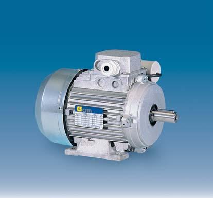 Фото - Электродвигатели асинхронные, однофазные, 2, 4, 6 полюсные — Serie MM — 230 V — 60 Hz