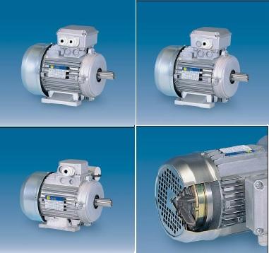 Фото - Электродвигатели однофазные, двухскоростные  2, 4 полюсные- Серия MMB — 115/230 V — 60 Hz